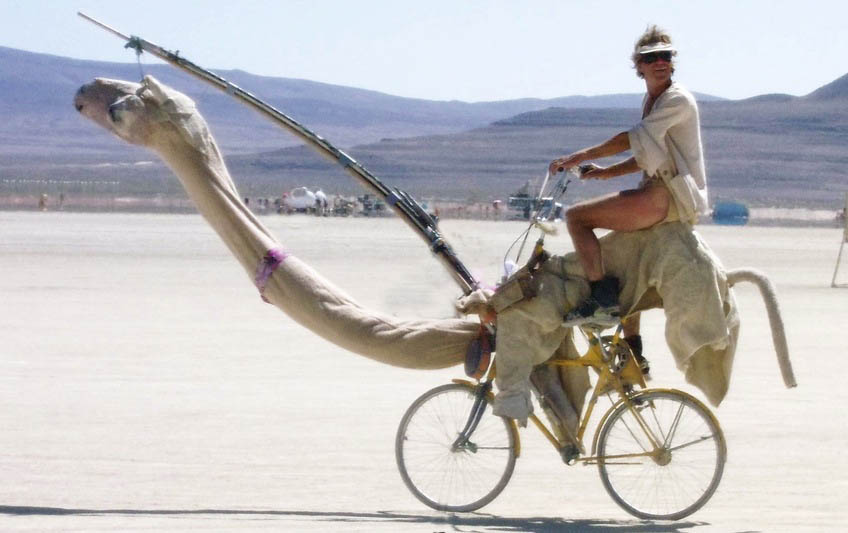 The Fusion Of Camel And Bike Behold The Cambike